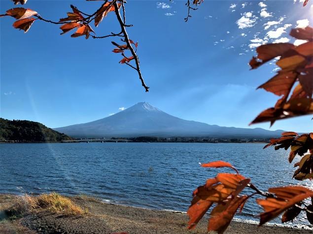 Fuji 08